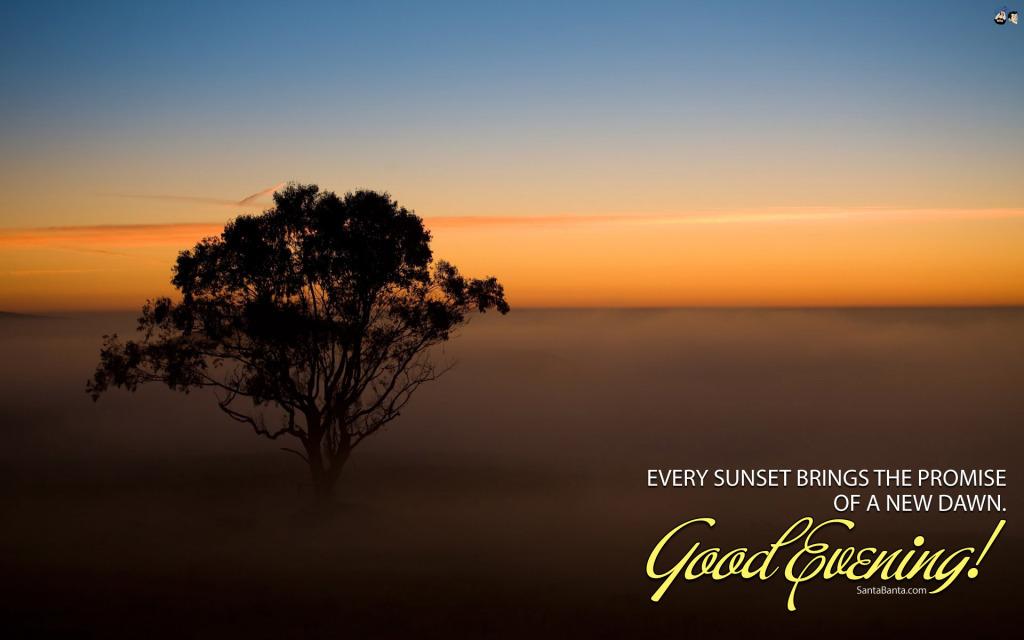 Good Evening Quotes